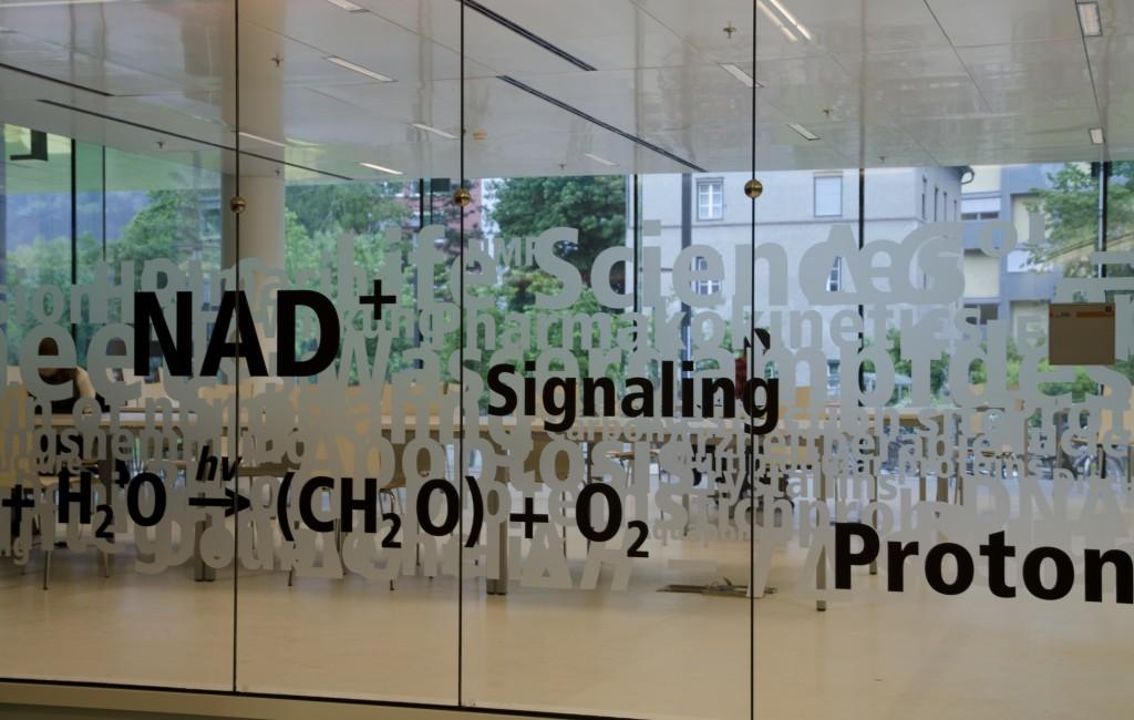 CCB – Centrum für Chemie und Biomedizin