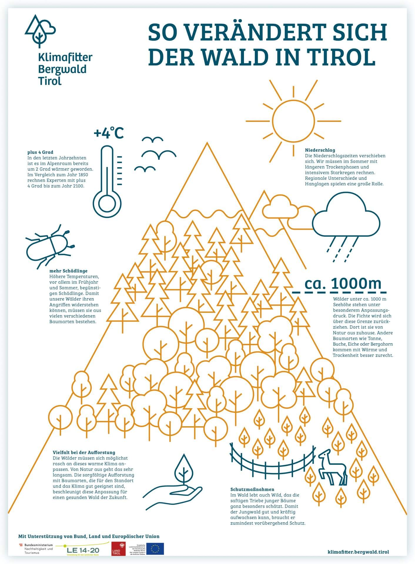 Klimafitter Bergwald Tirol